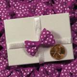 Fuchsia Itty Bitty Bow